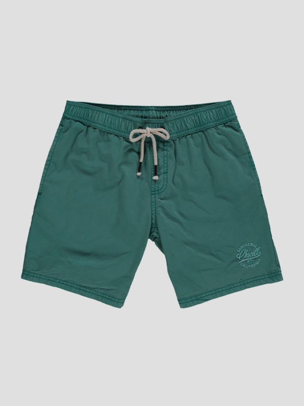 Kraťasy O´Neill LB SURFS OUT SHORTS Zelená